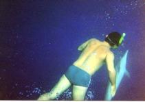 Nadando com os Golfinhos em Fernando de Noronha