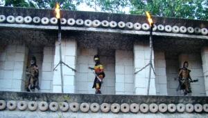 Tribo dos papacu-rasteiro
